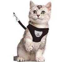 Kattentuigje - Kattenharnas - Kattentuig Met Looplijn