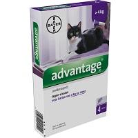 Advantage 80 Vlooiendruppels Kat