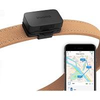 Invoxia - Huisdier GPS Tracker - Zonder Simkaart - Kat - Volgsysteem
