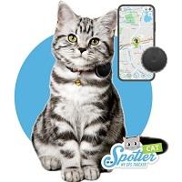 Spotter Huisdier GPS Tracker Kat - Zonder Abonnement - Activity Tracker